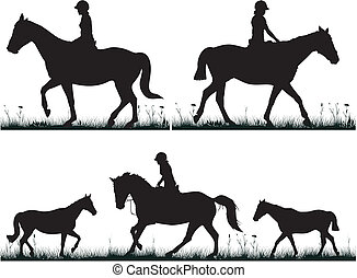dressage on the grass - girl on horseback - black and white...