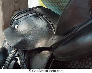 dressage, pferdesattel, cropped., schließen, yp