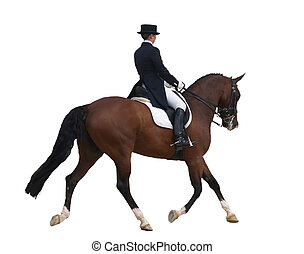 Dressage Rider - A horse in a dressage competition. Taken at...