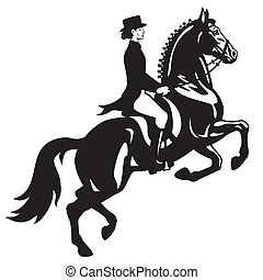 horse rider, dressage equestrian sport, black and white side view image