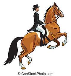 horse with rider, dressage equestrian sport, side view image isolated on white background