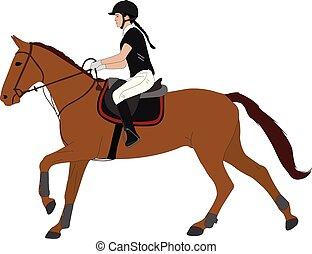 dressage, sport., jeune, équestre, équitation, cheval, femme, couleur, illustration.