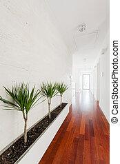 drewniany, biały, korytarz, parkiet