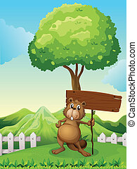 drewniany, drzewo, deska, pod, bóbr, opróżniać