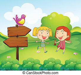 drewniany, dziewczyny, dwa, młody, niezależnie, deska, ptak