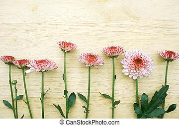 drewniany, kwiaty, tło