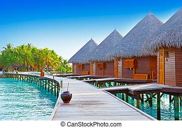 drewniany, na, droga, maldives., ocean