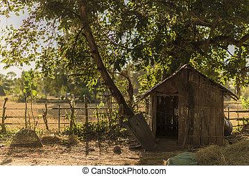 drewniany, okolica, płot