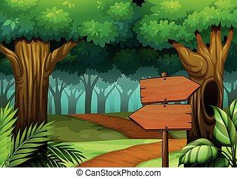 drewniany, scena, las, znaki