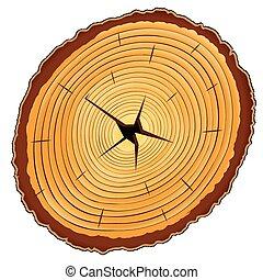 drewniany, sekcja, krzyż