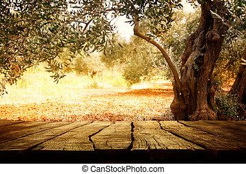 drewniany stół, oliwne drzewo