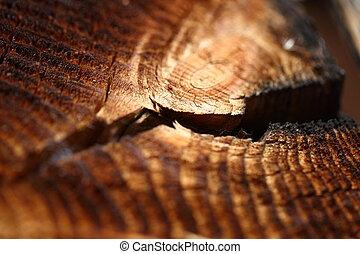 drewniany, tło, z, pęknięty, roczny, wzrostowe kolisko