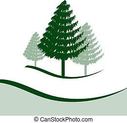 drie, bomen, dennenboom