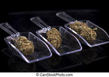 drie, cannabis, knoppen, vrijstaand, op, witte , -,...