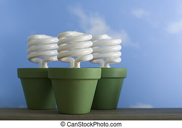 drie, cfl, spruit, potten
