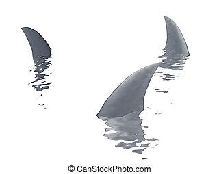 drie, haaien, vin, op, een, witte achtergrond