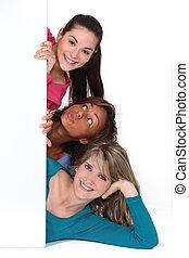 drie, jonge, achter, witte , paneel, vrouwen