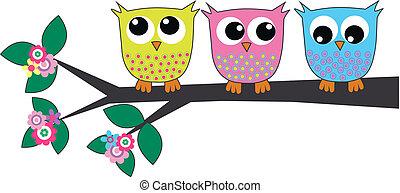 drie, schattig, uilen