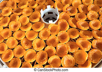 Dried Apricots on food dryer