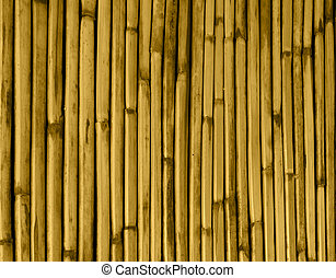 dried reeds of bambo tinted color