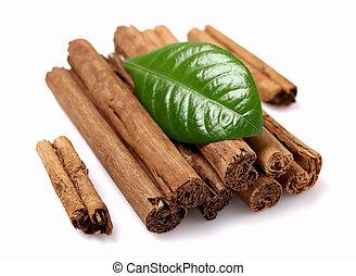 Dried bark of cinnamon with leaf