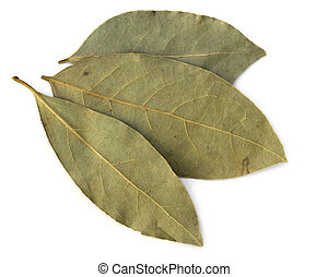 Dried Bay leaves - Three dried bay leaves, isolated on white...
