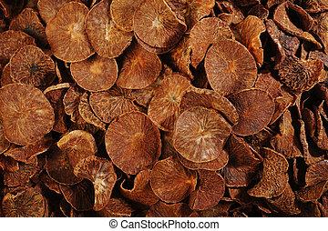 betel nut - dried betel nut background