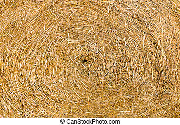 Dried brown hay background texture