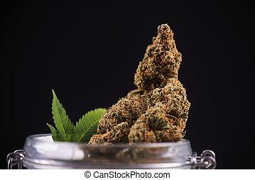 Dried cannabis buds (green crack strain) on a glass jar -...