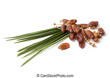Dried dates with leaf