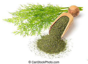 dried dill weed in the wooden scoop, with fresh dill weed, ...