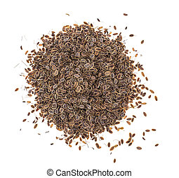 Dried dried fennel seeds on white background