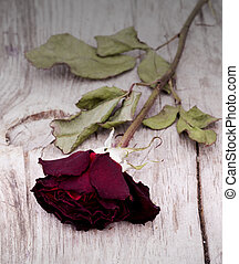 Dried faded roses on a wooden background