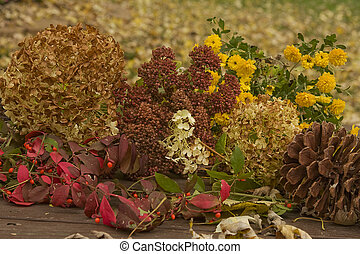 Dried Fall Flowers