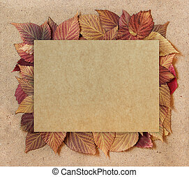dried fall leaves of plants, elements raspberry leaves laid out on cardboard with a place for accommodationon  background for scrapbook, object, roughage autumn leaf
