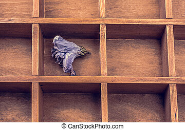 Dried flower put in a wooden box