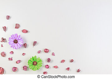 Dried flowers and leaves composition on white background. Top view, flat lay.