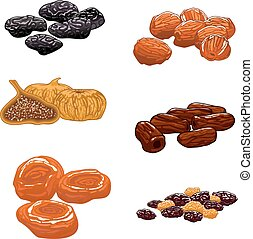 Dried Fruits set. Isolated vector icons