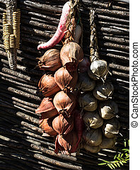 Dried hanging onions