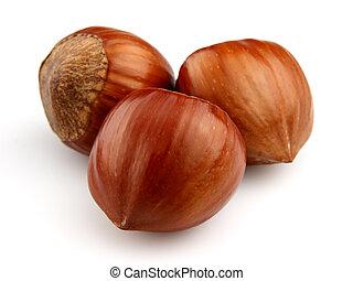 Dried hazelnuts in closeup