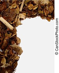 Dried Leaves Frame