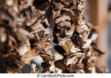 Dried mushrooms on a string in the market