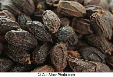 Dried NEEM Fruit with SEEDS, NIMODI (Azadirachta indica). -...