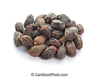 Dried NEEM Fruit with SEEDS, NIMODI (Azadirachta indica)...