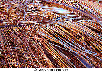 Dried Palm Fronds Background - Background of dried palm...
