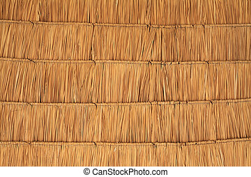 Dried palm tree leaves