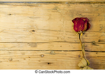 dried rose flower on wooden background