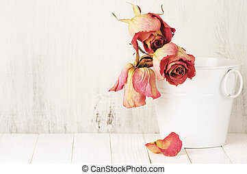 Dried roses in bucket - Dried pink roses in white bucket on...