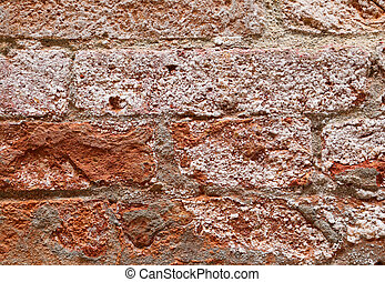 dried salt on a red brick wall beside a canal in Venice