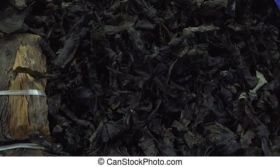 Dried seaweed sold in supermarket stock footage video -...